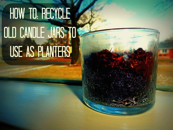 Recycling Candle Jars into Beautiful Planters.