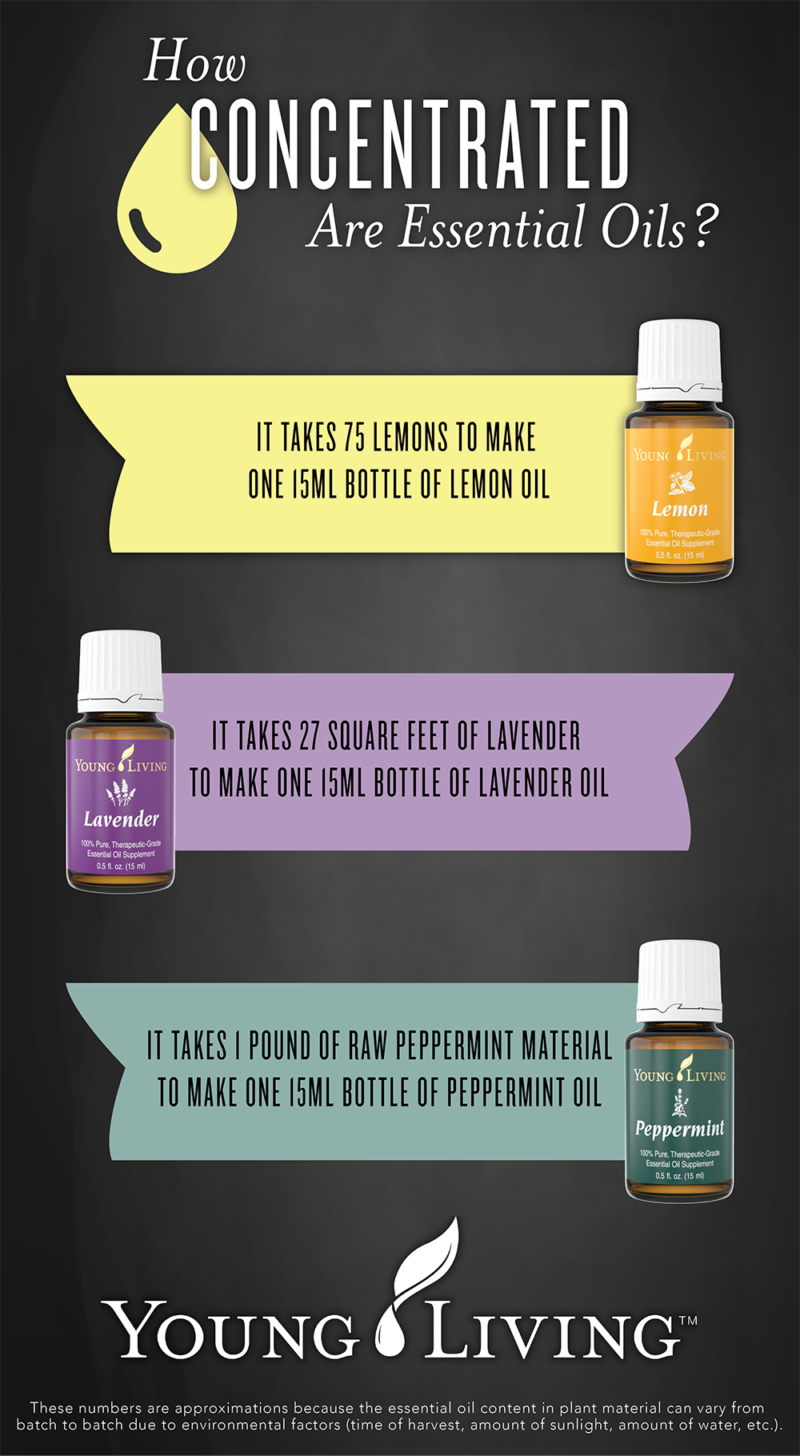 essential-oils-concentration